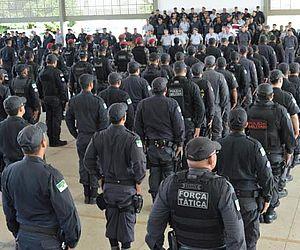 e6f156bfce069 https   www.tnh1.com.br noticia nid ima-emite-19-autos-de-infracao ...
