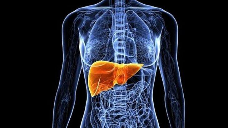 15 sinais que revelam que seu fígado não está funcionando bem - TNH1